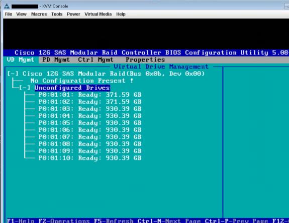 CiscoUCS - Remove RAID 2